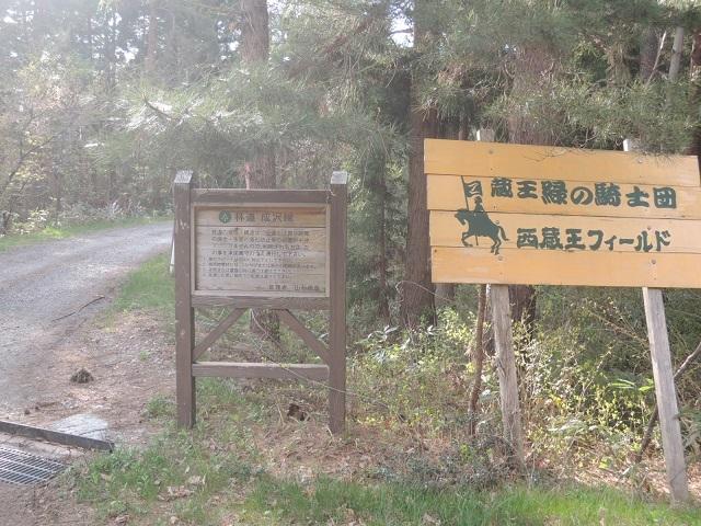 まじ林道のさきかよ.jpg
